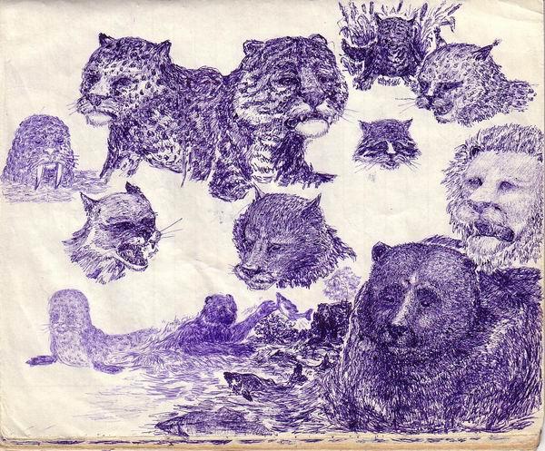 любительские рисунки карандашом: